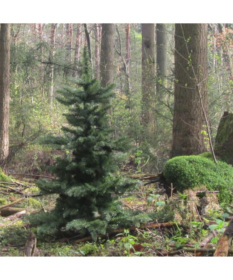 luxury-tree-210cm-natural