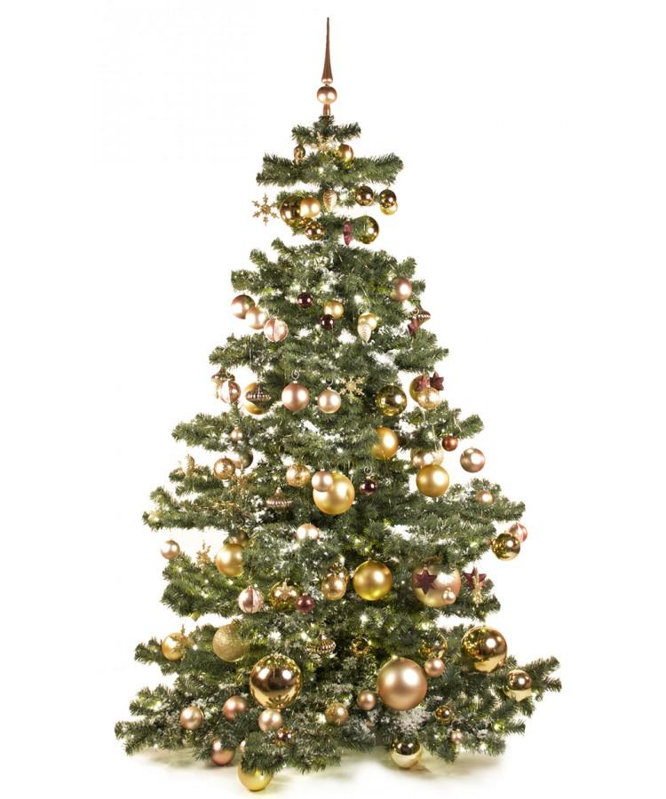 Basic Tree Golden Mocca 210cm-0