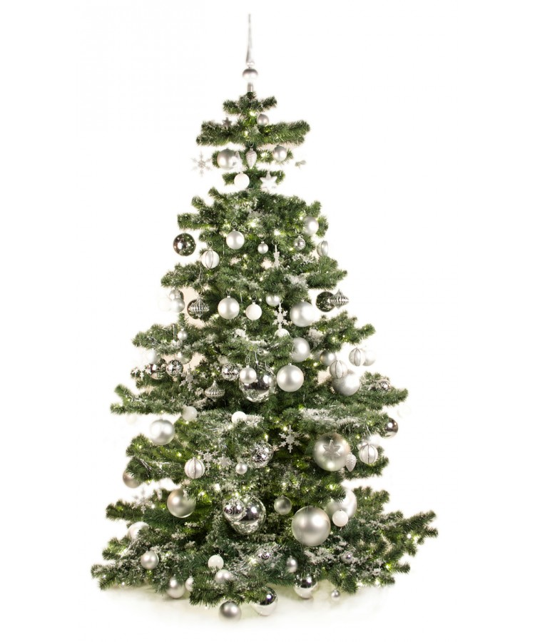 Basic Tree Bright and Silver 210cm-0