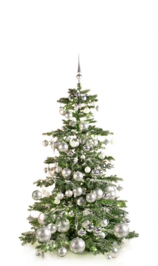 Luxury-Tree-Silver-180cm