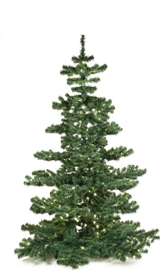 Basic Tree Plain 210cm-0